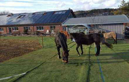 Nur an Pferdebesitzer! helle 2 Zi.Whg mit Offenstallplatz auf privatem Anwesen