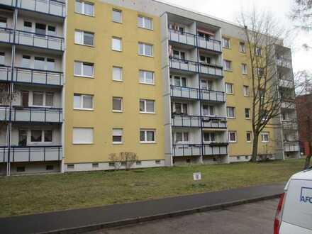 In sofort beziehbarer, großzügiger Singlewohnung - auch WG geeignet - Wohnen und Leben in Potsdam