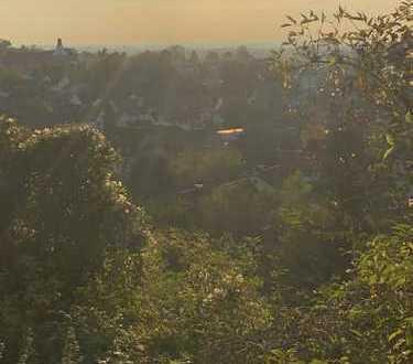 Grundstück mit einmaligem unverbaubaren Blick auf Weinheim und in Rheinebene