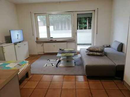 Wunderschöne 1-Zimmer-Wohnung in Hanhofen mit Stellplatz und Einbauküche zu vermieten!