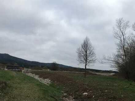 Schönes Baugrundstück in sonniger Lage von Bisingen inkl. Neubauprojektierung