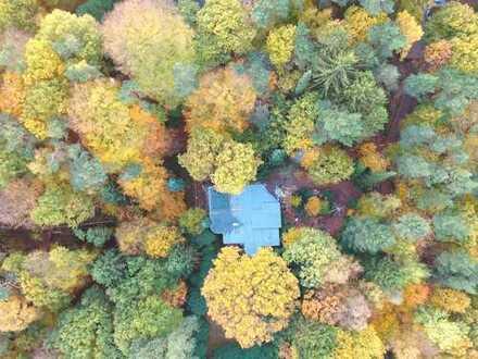 Wohnidylle im eigenen Wald am Hamburger Stadtrand