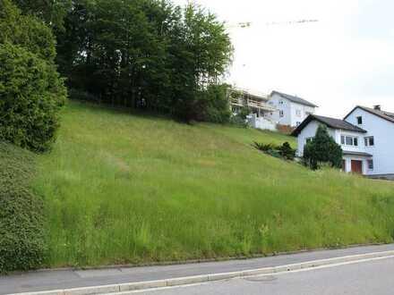 Sonniges, großzügiges Baugrundstück in Wilhelmsfeld mit herrlichem Blick
