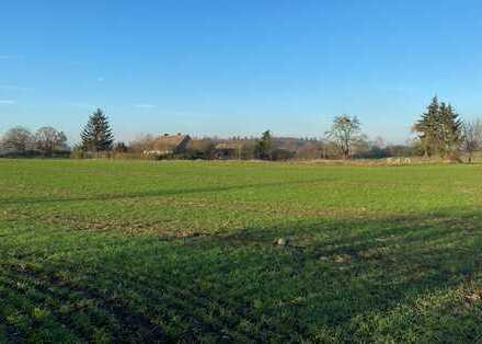Großes Baugrundstück im Boitzenburger Land zu verkaufen