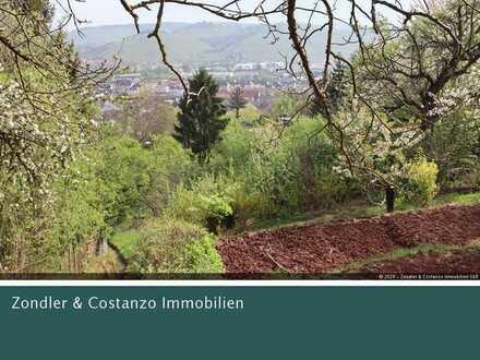 * MIT POTENTIAL * Großes, verwildertes Gartengrundstück mit Weitblick über das Neckartal!