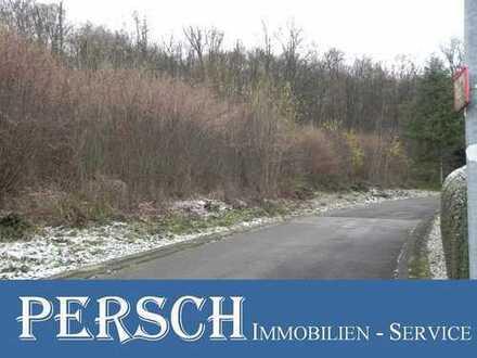 Herrlich gelegener Bauplatz in Randlage von Idar-Oberstein!!!