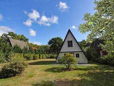 Schönes Grundstück in Born mit Ferienhaus