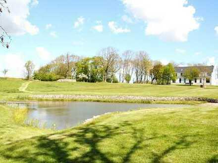 Modernes, luxuriös eingerichtetes Herrenhaus   eigener See   Parkähnliches Grundstück
