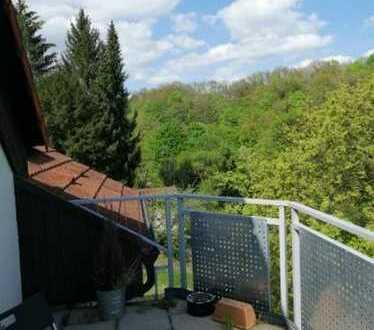 Schöne 72 qm 4-Zimmer Dachgeschosswohnung in zentraler Lage sucht Nachmieter-/in