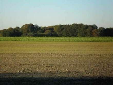 10,5 ha Landwirtschaftliche Nutzflächen in der Gemarkung Wardenburg