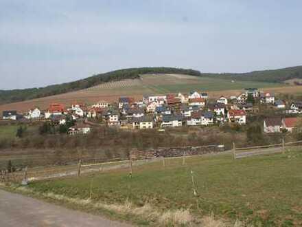 Wohnbauplatz Wertheim-Dietenhan Nr. 4