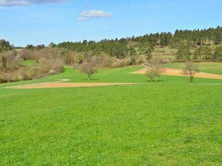 """Provisionsfrei - """"Natur Pur"""" Wald- und Wiesengrundstück auf dem """"Kuppelzen"""" bei Münklingen"""