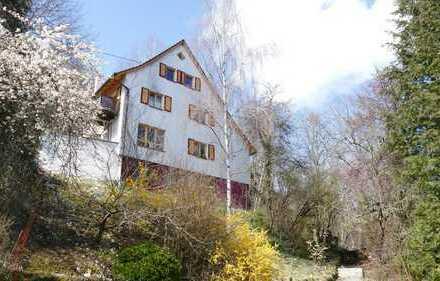 Heimeliges Stadthaus mit Weitsicht und 2 Garagen