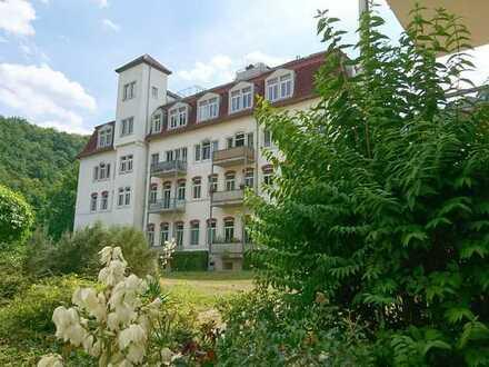 1 Zimmer im Grünen mit schönem Ausblick, Küche und Bad im idyllischen Lockwitzgrund 1 H 4
