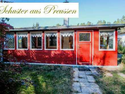 Schuster aus Preussen - Ferienhaus mittendrin in der Schorfheide - Aber Achtung, kein Biomarkt un...