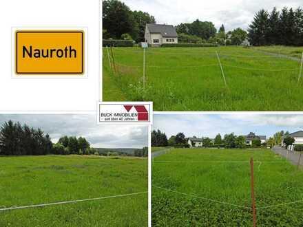 Der Platz für Ihr neues Zuhause ! Schönes großes Baugrundstück am Ortsrand von 57583 Nauroth