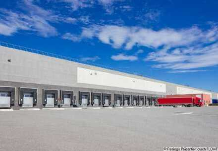 PROVISIONSFREI: Ca. 3.000 qm Logistikfläche | Rampe | 8 m UKB
