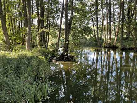 Mein Wald am einsamen See - 10.000 m2 geschütztes Biotop am Wasser in der Uckermark