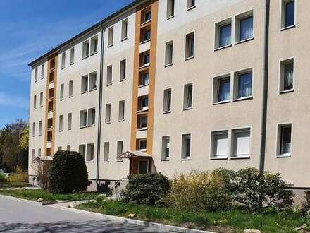 Frisch renovierte Wohnung sucht Sie!