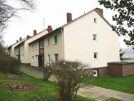 *Schöne 4-Zimmerwohnung mit Loggia in Waldrandlage*