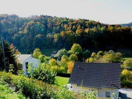 Grundstück mit traumhaftem Ausblick in Horb-Isenburg für DH oder EFH, MFH