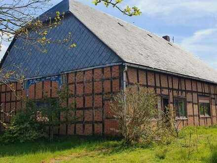 handwerkerfreundliches Fachwerkhaus an der Elbe