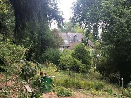 Großes Wohnhaus mit Einliegerwohnung und eigenem Waldgrundstück
