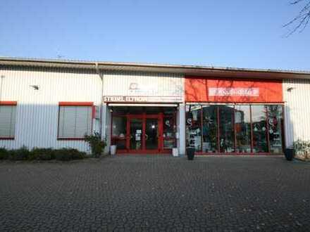 Gewerbeimmobilie in Efringen-Kirchen