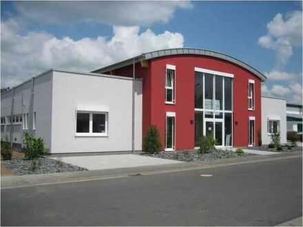 Gepflegte Industriehalle mit hochwertigen Büroräumen/Ausstellungsflächen