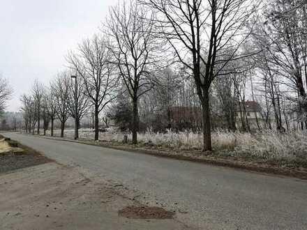 Großzügiges Grundstück in Schwepnitz