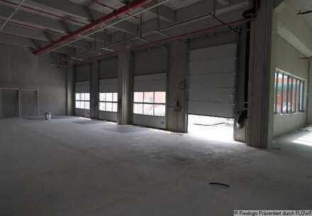 POTSDAM | ca. 400 - 22.400 m² | NEUBAUHALLEN