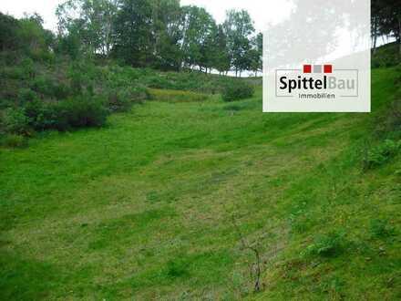 Ein Bauplatz im Schwarzwald von seiner schönsten Seite!