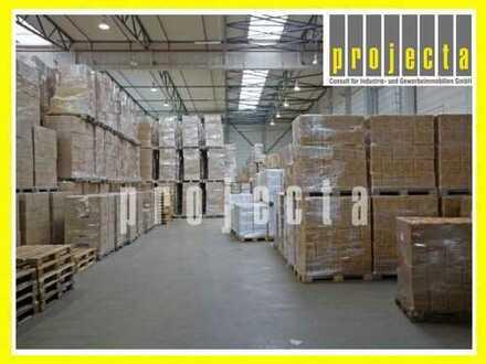 PROJECTA: 3.000 m² Lagerhalle | 8m UKB | 3x Rampen & 1x eben. Rolltor *DIREKT AN DER BAB60 & BAB61*