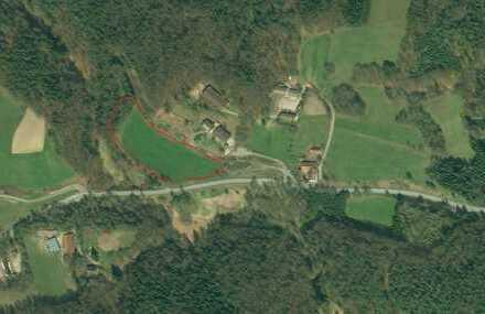 Landwirtschaftliche Nutzfläche nähe Thurmansbang Wiese/Wald