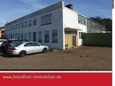 Gewerbehalle in Dillingen-Nord