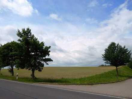 Dr. Lehner Immobilien NB -  Gewerbliches Bauland im Traditionsdorf