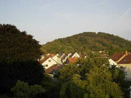 Charmante, frisch renovierte 2-ZKB Wohnung in Bensheim