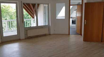 Loftartige, sanierte Wohnung mit Süd-Balkon und EBK sucht pfiffigen Mieter