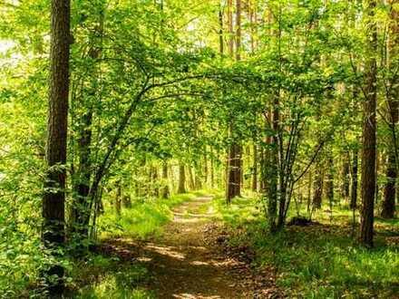 Wald - Landkreis Mühldorf - Fläche ca. 2,9 ha