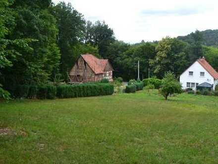 Sonniger Standort für Einfamilienhaus am Waldrand gelegen - Baulücke auf einer Anhöhe im Grünen