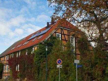 Ansprechendes 3-Zimmer-Reihenmittelhaus zur Miete in Blankenhof OT Chemnitz