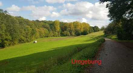 Schönes, großes Eckgrundstück zu verkaufen -Gemeinde Remchingen