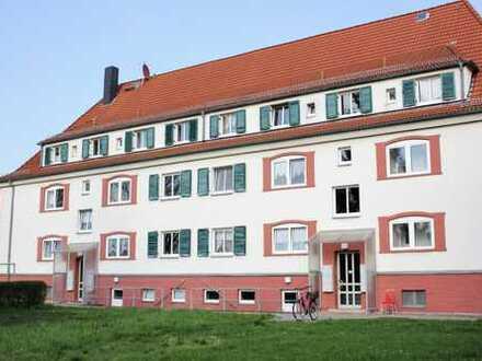 *Erstbezug nach Sanierung! Schöne, helle, moderne 3-Zimmerwohnung in Böhlen / EBK möglich *