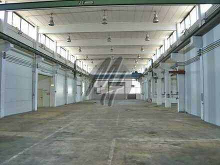PROVISIONSFREI! Lagerflächen (450 qm) & Büro-/Serviceflächen (390 qm/erweiterbar) zu vermieten