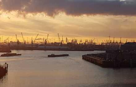 Panoramablick auf Elbe und Baakenhafen