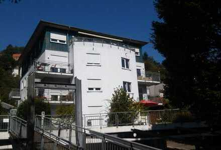 Heidelberg Midterm Apartment (furnished) 6-12 mth.