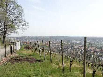 Lemberg / Perfekte Lage !! Möblierte 2-Zimmer-Wohnung mit schönem Garten in Stuttgart-Feuerbach
