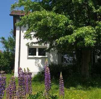 3,5 Zimmer Wohnung im Grünen: Hell, renoviert, mit großer Südterrasse und Garten