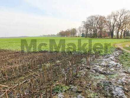 Rückzugsort im Grünen: Großes Baugrundstück mit Wiesen- und Weideland