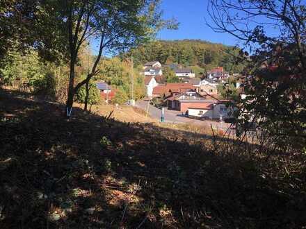 Zentral gelegenes Grundstück in Wartenberg-Rohrbach!